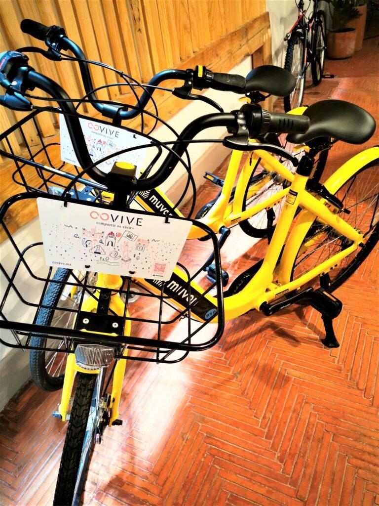 Bicicletas Covive y Muvon